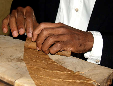 close up of tobacconists  hands whith tobacco leaves and cigar on the wood plank photo