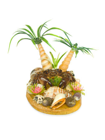 Palms, crab and conch (souvenir), isolated on white background photo