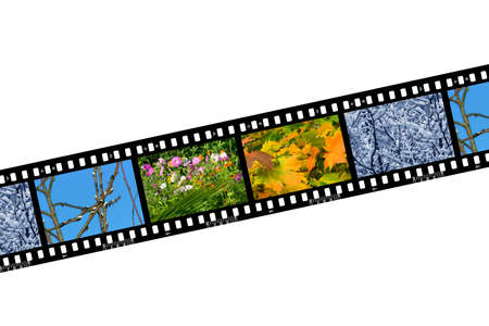 Spring, summer, autumn and winter, nature seasons in film frames, isolated on white background photo