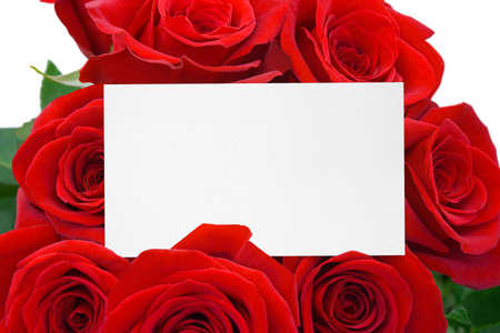 compliments: Card and roses, isolated on white background Stock Photo
