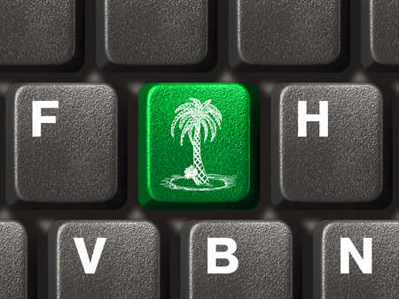 Computer keyboard with green palm tree key Stock Photo - 3363533