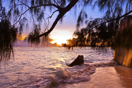 d argent: Sunset on tropical beach Source DArgent at Seychelles - nature background Stock Photo