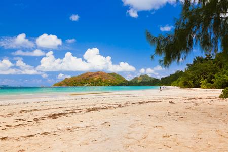 anse: Tropical beach Cote dOr at island Praslin Seychelles - vacation background