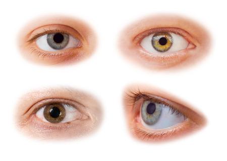 Eyes set - isolated on white background photo