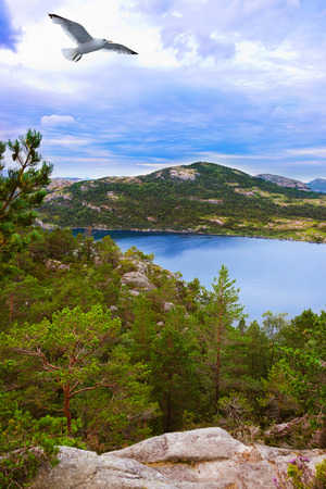 scandinavian landscape: Mountains on the way to the Cliff Preikestolen in fjord Lysefjord - Norway - nature and travel background Stock Photo