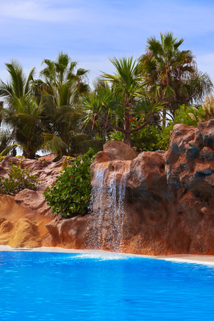rainforest background: Waterfall in park at Tenerife Canary - nature travel background