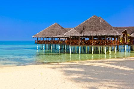 palapa: Cafe on tropical Maldives island - nature travel background