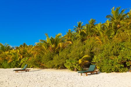 palapa: Loungers on Maldives beach - nature vacation background