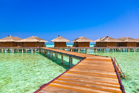 palapa: Bungalows on tropical Maldives island - nature travel background