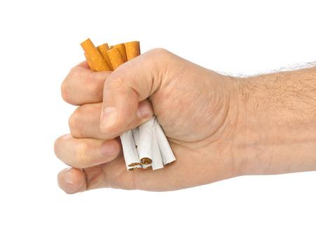 hombre fumando: Cigarrillos rotos en la mano aisladas sobre fondo blanco Foto de archivo