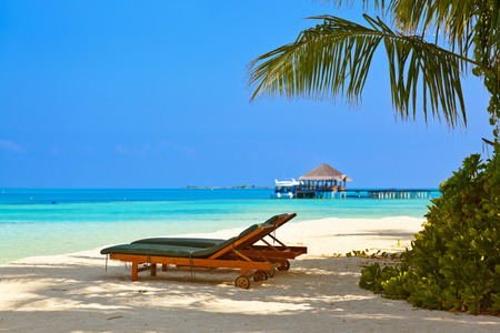 sea bed: Loungers on Maldives beach - nature vacation background