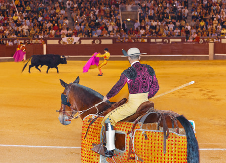corrida: Matador and bull in corrida at Madrid Spain Editorial