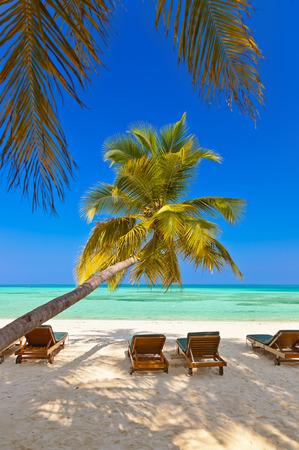 palapa: Maldives beach - nature vacation background Stock Photo