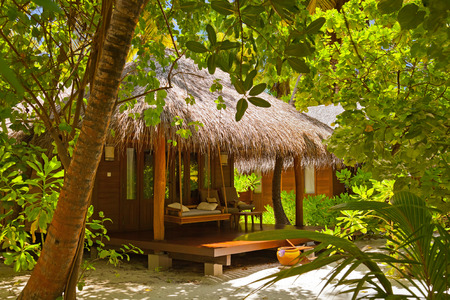 palm garden: Beach bungalow - Maldives vacation background Stock Photo