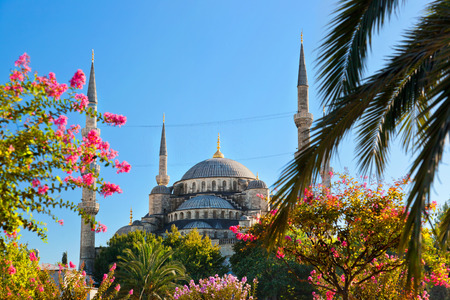 blue mosque: Blue mosque in Istanbul Turkey - architecture religion background Stock Photo