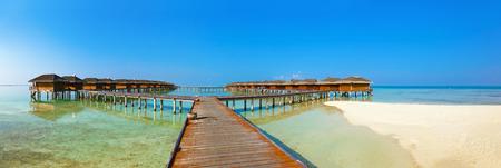 maldives island: Bungalows on tropical Maldives island - nature travel background