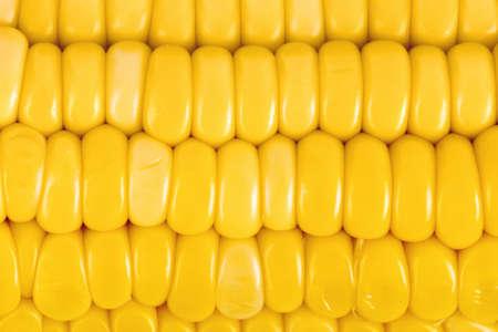 maiz: Espiga de trigo - fondo de alimentos
