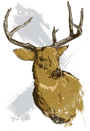 Hand drawn vector illustration of a wild deer all parts are editable view my full portfolio for similar images Stock Vector - 3223978