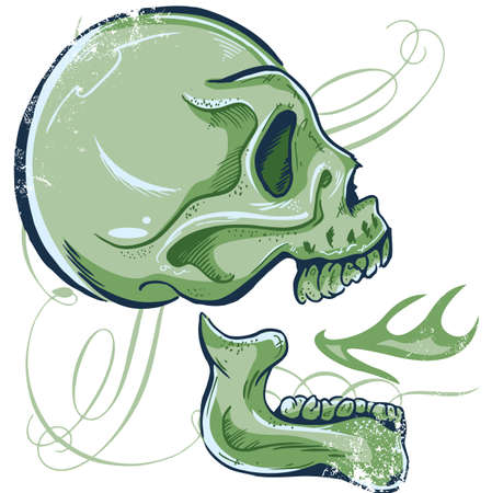 Hand Drawn Skull illustration side view all parts are seperate and fully editable