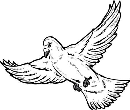 Dove in flight illustration. Vector format fully editable. Vector