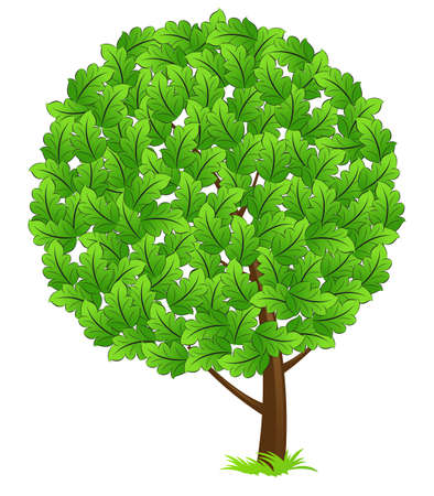 Green tree icon with leaves and grass isolated on white Stock Vector - 4932121