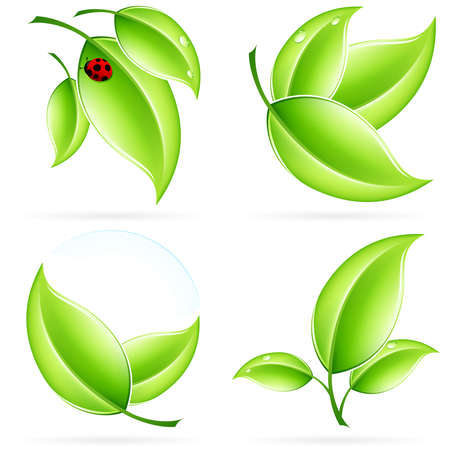 Green ecology concept  icons with leaf and shadow for your design