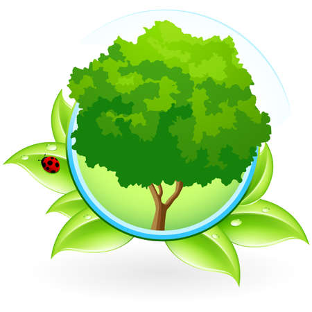 Green ecology icon with leaves and Tree for your design Stock Vector - 6990135