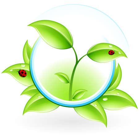 germinaci�n: Icono de concepto de ecolog�a verdes con hojas para el dise�o