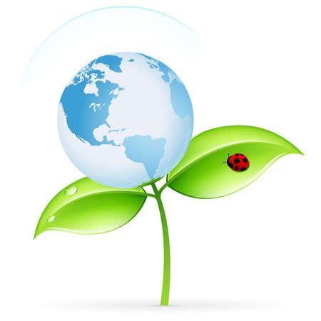 planeta verde: Icono de ecología verdes con hojas y Globo para su diseño