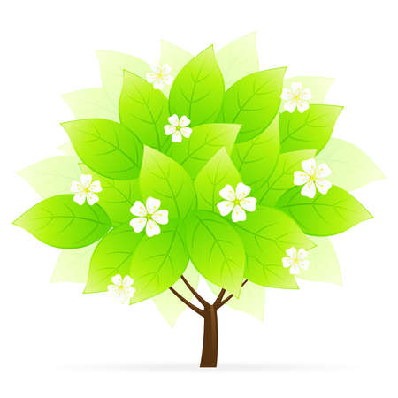 Green Tree Icon with flowers isolated on white Vector