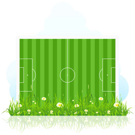 white bacground: Football field with grass and flowers Isolated on white bacground