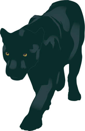 ominous: panther