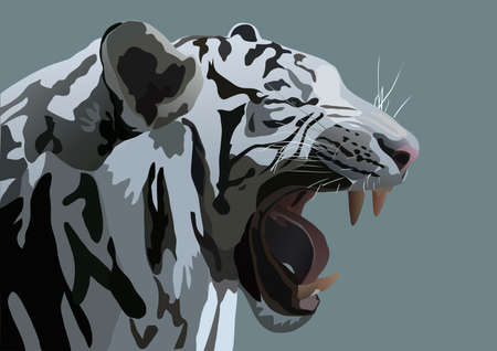 roaring tiger: the illustration of white Bengal tiger Stock Photo