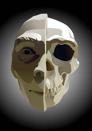 the illustration of human head with part of skull illustration