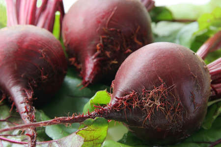 harvests: Red beet on green leaves. Stock Photo