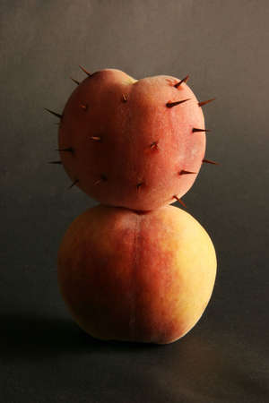 defenceless: Two peaches on a black background. One with thorns, another without.