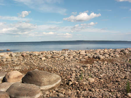 stony: Stony seaside