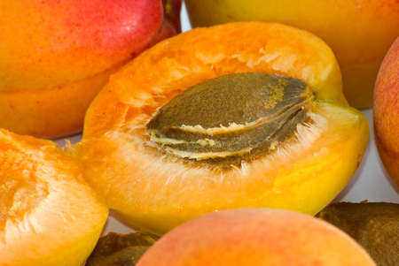 Apricot nucleus are photographed close-up  Stock Photo
