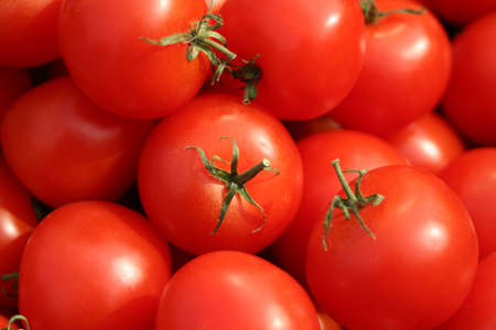 Tomatoes Stock Photo - 435213