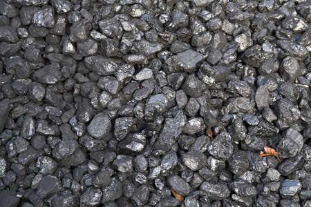 Shiny black coal highlighted with brown leaves Stock Photo