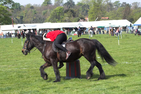 marquees: horse being ridden a speed past an obstacle at a village gymkhana, rider is leaning right off