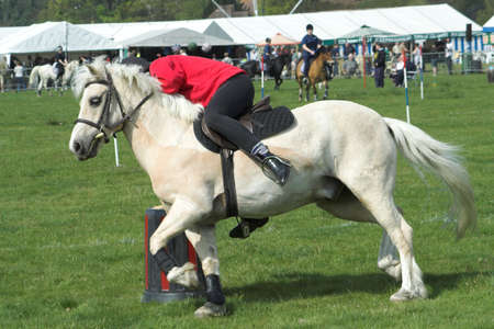 girl on a white pony taking part in an obstance event at a village gymkhana Stock Photo