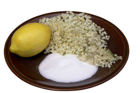Elderflower Sorbet ingredients, elderflowers, lemon (for the juice) and sugar on a brown plate Stock Photo - 963446
