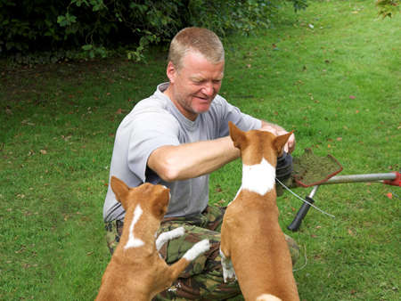 Sometimes a gardener need help and these hounds are more than willing photo