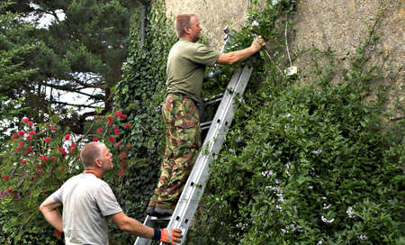 Gardener pruning from a ladder while another holds it.