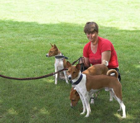 Dog Walker photo