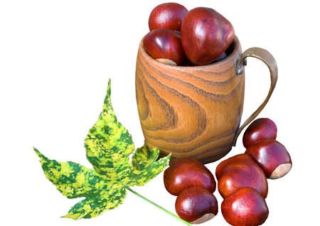 horse chestnuts: Wooden mug with Conkers or Horse Chestnuts and a variegated leaf Stock Photo