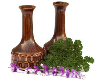 Cruets (condiments) & Herbs, Salt, Pepper, Salvia & Parsley, Seasonings and Garnishes Stock Photo - 1998418