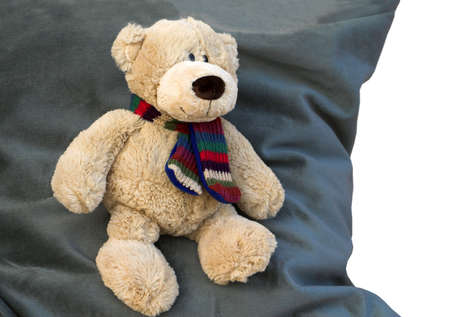 Teddy Bear on a comfy blue cushion - watching for Christmas ?