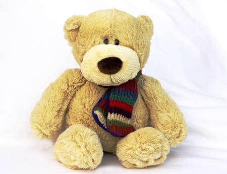 Teddy Bear sitting on a white table cloth
